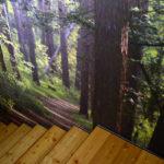http://texi.pennagrafica.com/media/k2/galleries/44/f.jpg